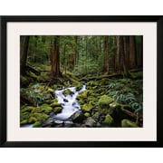 Art.com  'Brook in Sol Duc River Valley'  25 x 31 (10451481)