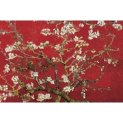 Art Vincent van Gogh 'Almond Blossom (Red)' 24 x 36 (10650890)