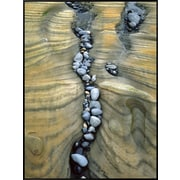 Art.com  Jaynes Gallery 'Rocks Caught in Sandstone Formations, Seal Rock Beach, Oregon, USA'  41 x 31 (12366148)