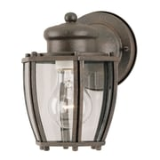 Westinghouse Lighting 1-Light Outdoor Wall Lantern; Textured Rust Patina