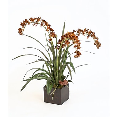 Distinctive Designs Silk Dendrobium Orchid in Box