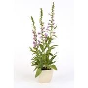 Distinctive Designs Silk Mini Lavender Foxglove Garden in Square Crackle Planter