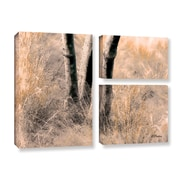 ArtWall Desert Grasses Ii by Linda Parker 3 Piece Graphic Art on Gallery Wrapped Canvas Set