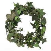 Distinctive Designs DIY Foliage Artificial Ivy Wreath; 18''