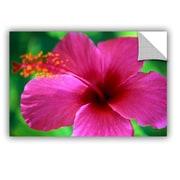 ArtWall ArtApeelz Maui Pink Hibiscus by Kathy Yates Photographic Print; 32'' H x 48'' W x 0.1'' D