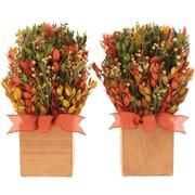 Urban Florals Fall Gatherings Tabletop Basket (Set of 2)