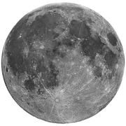 Wallhogs Full Moon Cutout Wall Decal; 48'' H x 48'' W