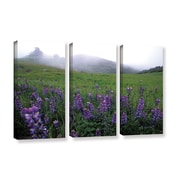 ArtWall Figueroa Mountain with Fog by Kathy Yates 3 Piece Photographic Print on Wrapped Canvas Set