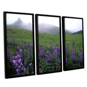 ArtWall Figueroa Mountain with Fog by Kathy Yates 3 Piece Framed Photographic Print on Canvas Set