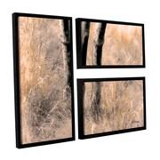 ArtWall Desert Grasses Ii by Linda Parker 3 Piece Floater Framed Photographic Print on Canvas Set