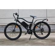 Big Cat E-Bykes Ghost Rider Electric Mountain Bike; Gray/Black