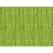 "Fadeless 48"" x 12' Bamboo, Paper Rolls, (PAC56888)"