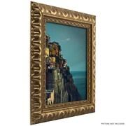 Craig Frames Inc. 2.03'' Wide Ornate Picture Frame; 5'' x 7''