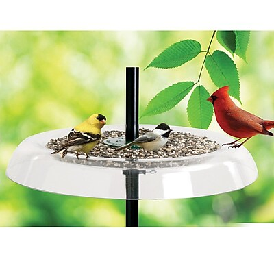Droll Yankees Giant Seed Tray Bird Feeder and Squirrel Guard (WYF078277868957) photo