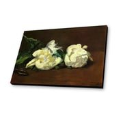 Lamp-In-A-Box Branch Of White Peonies With Pruning Shears by Edouard Manet Painting Print
