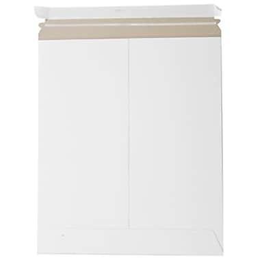 JAM Paper® Photo Mailer Stiff Envelopes with Self Adhesive Closure, 12.75 x 15, White, 10/Pack (4PSWg)