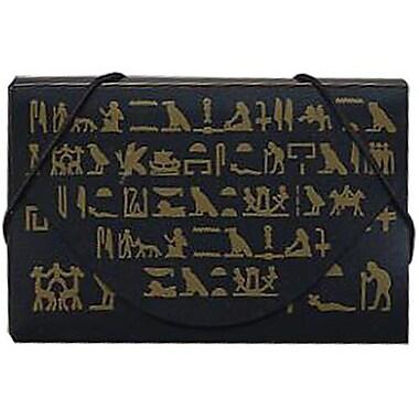 JAM Paper® Plastic Business Card Case, Brooklyn Museum Design Black/Gold, 5/Pack (53667492g)
