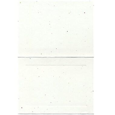 JAM PaperMD – Cartes pliées vierges avec bordure, 4 5/8 x 6 1/4 po, fiesta, 500/pqt