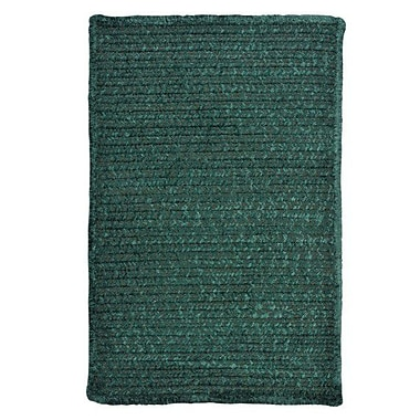 Colonial Mills Solid Chenille Dark Green Area Rug; Square 5'
