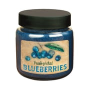 LANG Fresh Picked Blueberries 16 oz Jar Candle (3140013)