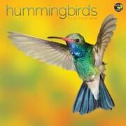 "2016 TF Publishing 12"" x 12"" Hummingbirds Wall Calendar (16-1154)"
