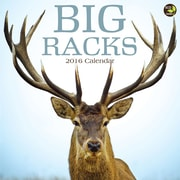 "2016 TF Publishing 12"" x 12"" Big Racks Wall Calendar (16-1177)"