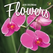 "2016 TF Publishing 7"" x 7"" Flowers Mini Calendar (16-2099)"