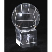 Chass 885-039 Volleyball Net and Player Optical Glass (CH383)