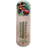 Taylor Precision Products 2784015 Thermometer Tomato 17 In. by