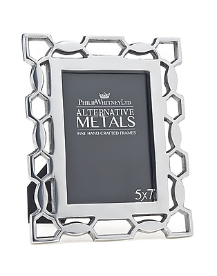 Philip Whitney Pierced Picture Frame; Aluminum WYF078277890212