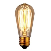 String Light Co 40W Antique Light Bulb