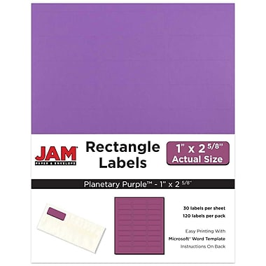 JAM Paper® Mailing Address Labels, 1 x 2 5/8, AstroBrights® Planetary Purple, 120/pack (302725788)