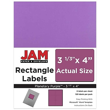 JAM Paper® Mailing Address Labels, 3 1/3 x 4, AstroBrights® Planetary Purple, 120/pack (302725792)
