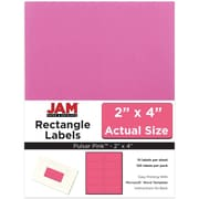 JAM Paper® Mailing Address Labels, 2 x 4, AstroBrights® Pulsar Pink, 120/pack (302725797)