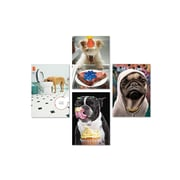 "Portal,  Fun Dog Photography Cards, Birthday, 5"" x 7"", 4 Pack"