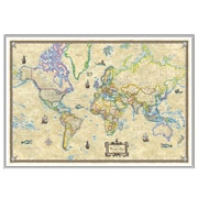 Universal Map World Antique Mounted Framed Wall Map; Silver