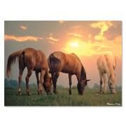 "Melissa & Doug 300-Piece Sunrise Horses Cardboard Jigsaw 14.5"" x 10.5"" x 2.5"" (8994)"