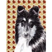 Caroline's Treasures Black and White Collie Fall Leaves House Vertical Flag