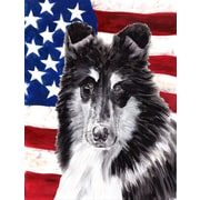 Caroline's Treasures Black and White Collie w/ American Flag USA 2-Sided Garden Flag