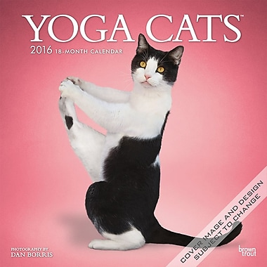 BrownTrout Publishers – Calendrier mural 2016, 12 mois, Yoga Cats, 12 x 12 po, anglais