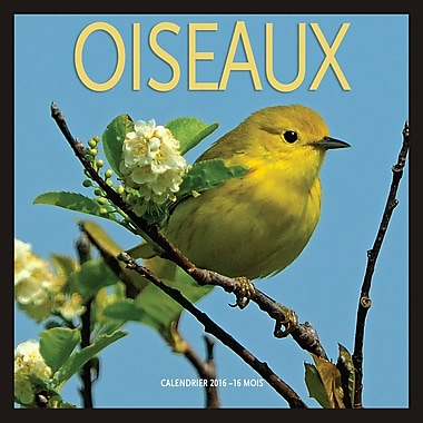2016 BrownTrout Publishers 12-Month Wall Calendar, Oiseaux, 7