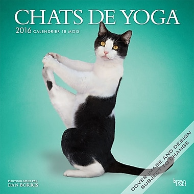 2016 BrownTrout Publishers 12-Month Wall Calendar, Yoga Cats, 12