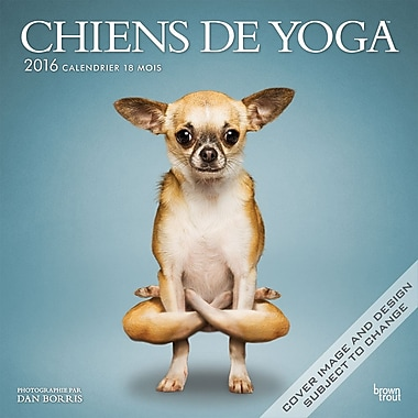2016 BrownTrout Publishers 12-Month Wall Calendar, Yoga Dogs, 12