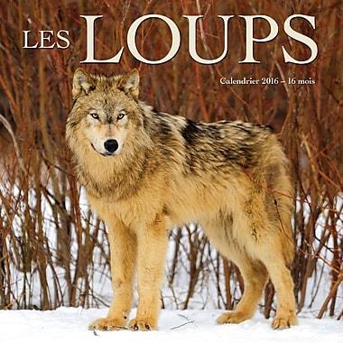 BrownTrout Publishers – Calendrier mural 2016, 12 mois, Les Loups, 12 x 12 po, français