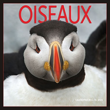 2016 BrownTrout Publishers 12-Month Wall Calendar, Oiseaux, 12