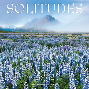 2016 BrownTrout Publishers 12-Month Wall Calendar, Solitudes, 12