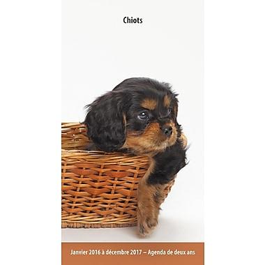 BrownTrout Publishers – Agenda de poche, 2 ans, Chiots, français