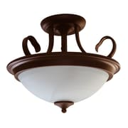 EfficientLighting 2 Light Semi Flush Mount