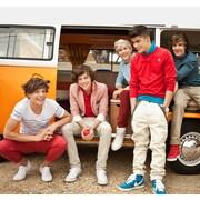 WallPops! One Direction Campervan Wall Mural