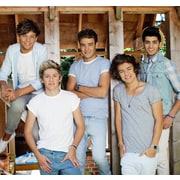 WallPops! One Direction Barn Wall Mural